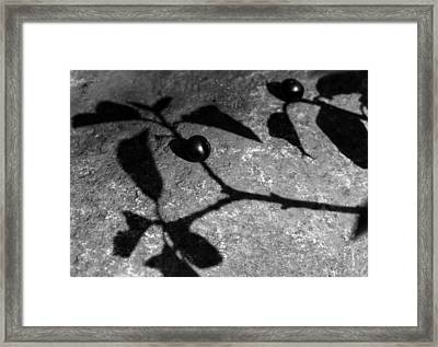 Shadow Of Illusion Framed Print by Dagmar Batyahav
