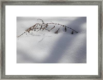 Framed Print featuring the photograph Shadow On Snow 2 by Tad Kanazaki