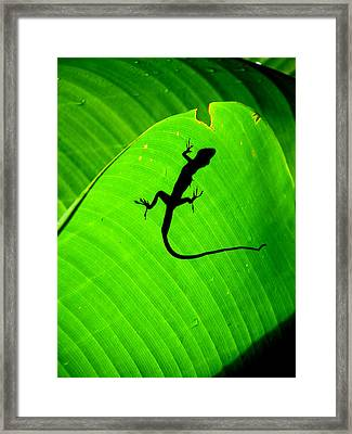Shadowlizard Framed Print