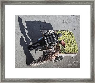 Shadows 2 Framed Print by Chuck Kuhn