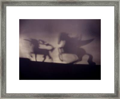 Shadows Framed Print by David Campbell