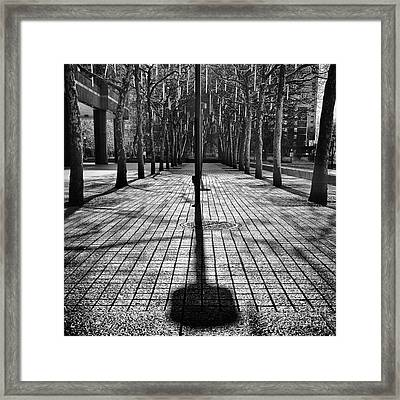 Shadows On The Ground Framed Print by John Farnan
