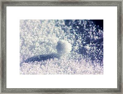 Framed Print featuring the photograph Shanow11 by Cazyk Photography