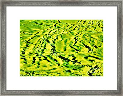 Framed Print featuring the photograph Shanow2 by Cazyk Photography