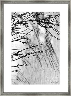 Framed Print featuring the photograph Shanow8 by Cazyk Photography