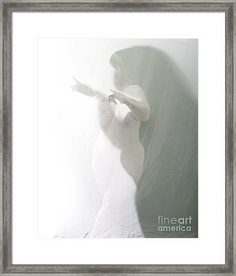 Shaped Shadows Framed Print by Scott Sawyer