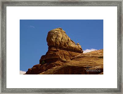 Shaq's Shoe At Canyonlands Framed Print by Adam Jewell