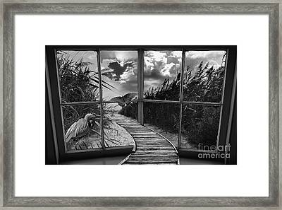 Sharing In The View Framed Print by Scott Allison