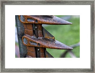 Sharp Blades Framed Print by Wilma  Birdwell