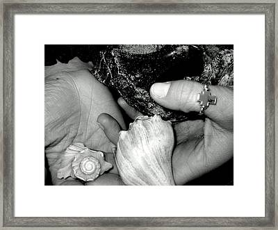 Framed Print featuring the photograph She Sells Seashells... by Lyn Calahorrano