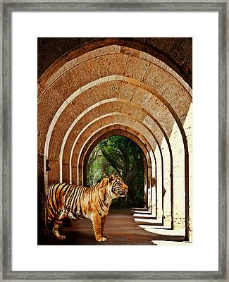 She Waits.... Framed Print by Sharon Lisa Clarke