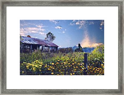 Shed In Blue Sky Framed Print by Walt Jackson