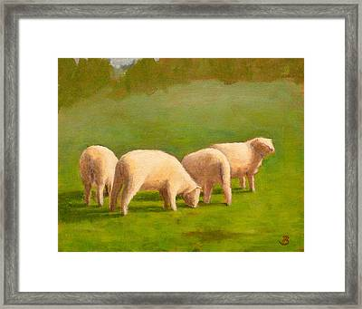 Sheep Shapes Framed Print