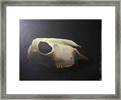 Sheep Skull Framed Print
