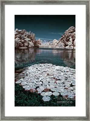 Sheffield Park Gardens House - Infrared Photography Framed Print