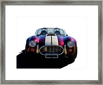 Shelby's Shadow Framed Print by Douglas Pittman