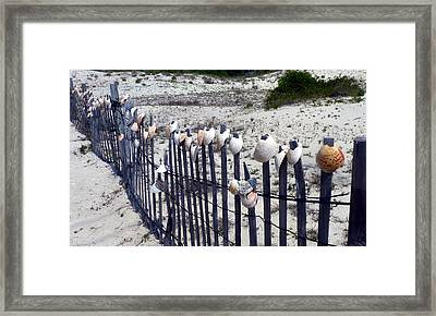 Shell-decorated Fence Framed Print by Carla Parris