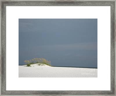 Shell Island Dune Framed Print