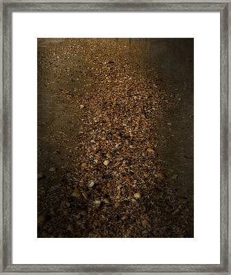 Shell Road Framed Print