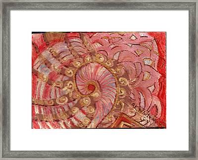 Shell Sensation Framed Print by Anne-Elizabeth Whiteway