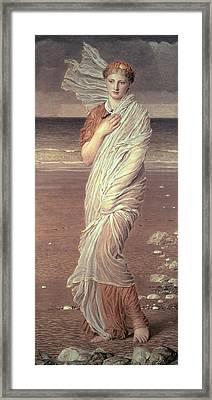 Shells  Framed Print by Albert Joseph Moore