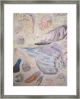 Shells Framed Print by James Cox