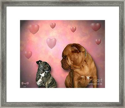 Shelter Dogs Framed Print