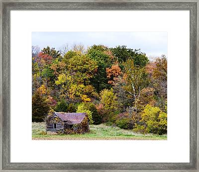 Shelter In The Fall Woods Framed Print