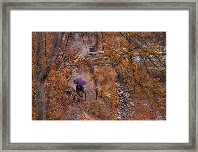 Framed Print featuring the photograph Alone Together by Tom Gort