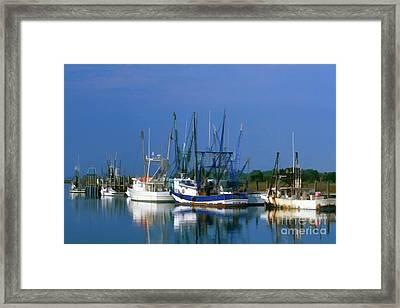 Shem Creek - Fs000295b Framed Print by Daniel Dempster