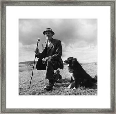 Shepherd Framed Print by Bert Hardy