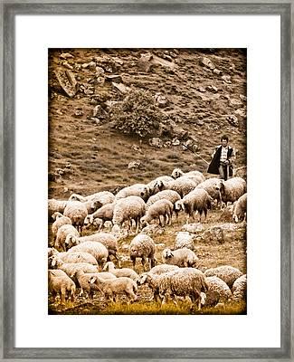 Guzelyurt, Turkey - Shepherd Framed Print