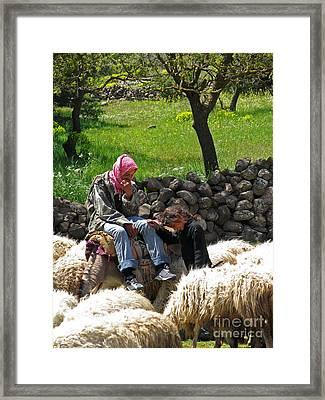 shepherds in Golan Framed Print by Issam Hajjar