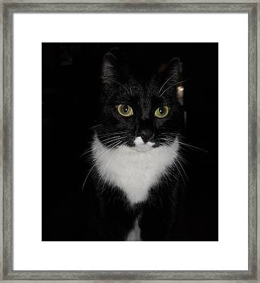Framed Print featuring the photograph She's Got Bette Davis Eyes by Diannah Lynch