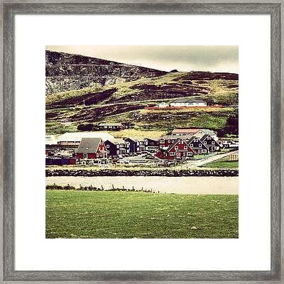 Shetland Framed Print