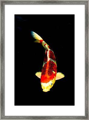 Shigure01 Framed Print