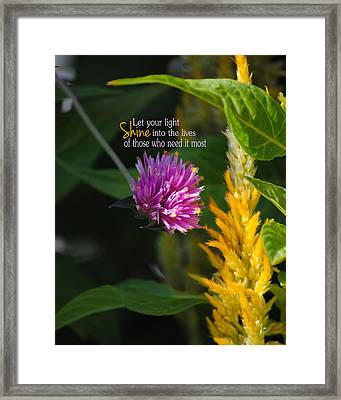 Shine Encouraging Pink And Yellow Flower Photograph Framed Print by Jai Johnson