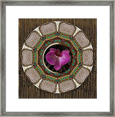 Shines Like The Sun On You Framed Print by Pepita Selles