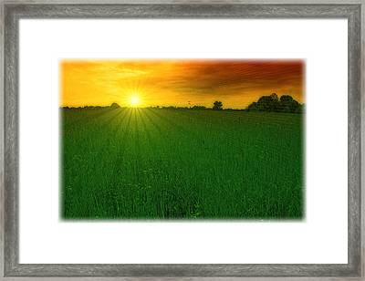 Shining On Framed Print by Tom York Images