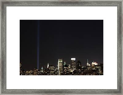 Shining Up  Framed Print