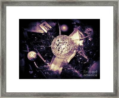 Framed Print featuring the photograph Shiny And Bright by Nancy Dole McGuigan