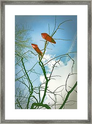 Shoes In The Sky Framed Print by Joana Kruse