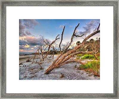 Shoreline Beach Driftwood And Grass Framed Print by Jenny Ellen Photography