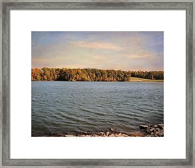 Shoreline Framed Print by Jai Johnson