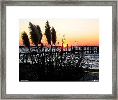 Shoreline Serenity Framed Print