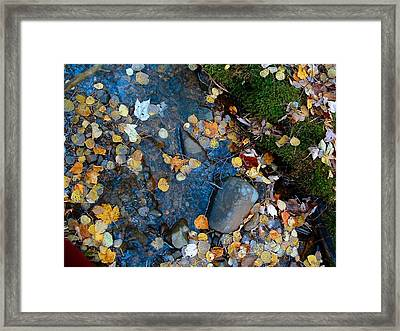 Shorelines - Campbell Creek Framed Print