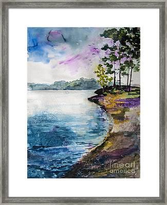 Shores Of Lake Lanier Georgia Framed Print