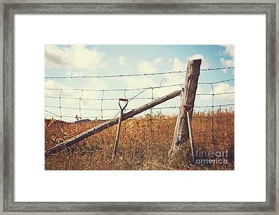 Shovels Leaning Against The Fence Framed Print by Sandra Cunningham