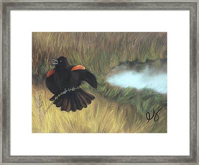 Show-off Framed Print by Estephy Sabin Figueroa