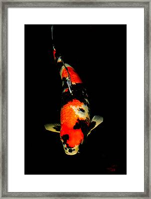 Showa02 Framed Print